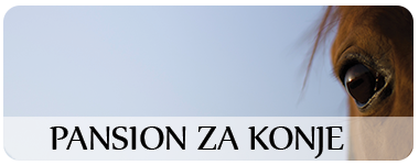 pansion za konje